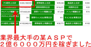 【ニーロク】2億6000万円をネットで稼いだ方法を完全公開~イケハヤさん、マナブさんとも違うBrain(ブレイン)もNote(ノート)も使わない副業副収入~アフィリエイト報酬50%