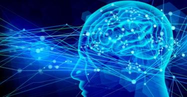 【 英語 × 脳科学 】 最も手っ取り早く英語を習得する方法~本質編~