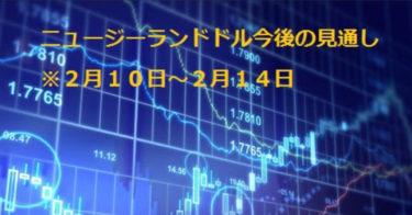 FX/投資/ニュージーランドドル今後のポイント教えます!(画像付き)