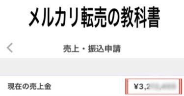 スマホだけで「累計1000万円以上(利益)」を稼いだメルカリ転売の教科書
