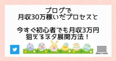 ブログで月収30万円稼いだプロセスと今すぐ初心者でも月収3万円狙えるネタ展開方法!