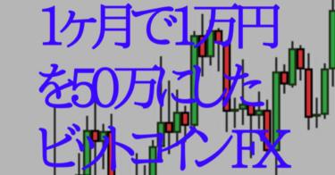 ビットコインFXで1万円を50万円にした方法