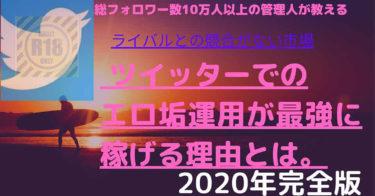 【2020年再現性NO1の副業】Twitter×エロ垢運用で最短でフォロワーを伸ばし稼ぐ方法、全部教えます。