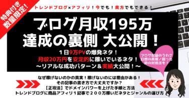 ブログ月収195万達成秘話! 1日9万PV爆発ネタと月20万安定で稼ぐネタの裏側大公開!