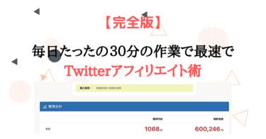 【完全版】毎日たったの30分の作業で最速でTwitterアフィリエイト【エ口垢必見です】