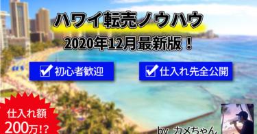 【ハワイ転売ノウハウ全公開】ハワイ旅行で利益100万!?旅行ついでにハワイで利益を出す方法
