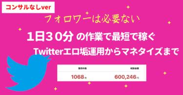 【完全版】たったの1日30分の作業で最速で稼ぐTwitter運営術
