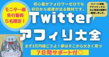 【先着予約確約モニター5名様限定】Twitterアフィリ大全*7日間サポート付