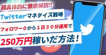 Twitterマネタイズ戦略|フォロワー0から1日30分運用で250万円稼いだ方法を超具体的に徹底解説!