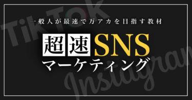 【Instagram × TikTok】1冊で2つのSNSを攻略して最速でインフルエンサーになるためのテキスト(7.7万字)